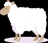 Illustration d'un mouton