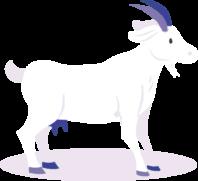 Illustration d'une chèvre